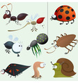 cartoon insect set vector image
