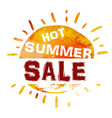 summer sale banner bright template banner vector image