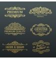 Vintage Golden Banners Labels Frames vector image