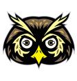 owl head mascot vector image vector image