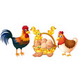 Chickens and little chicks with basket of eggs vector image