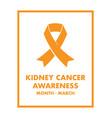 kidney cancer awareness vector image