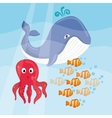 Sea Fauna graphic design vector image
