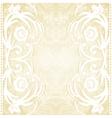 Delicate lace wedding invitation vector image