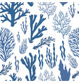 trendy summer seaweed design vector image