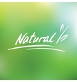 Handwritten logo Natural vector image