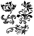 scroll floral vector image vector image