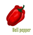 Bell pepper vegetable plant icon vector image