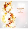 Autumn swirl of leaves vector image