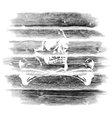 logs timber with a skull vector image