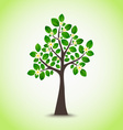 Spring flowering tree with green leaves background vector image