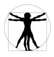 Vetruvian man silhouette vector image