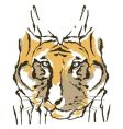 tiger fashion design vector image