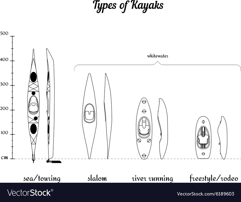 Set of different kayak types in comparison vector