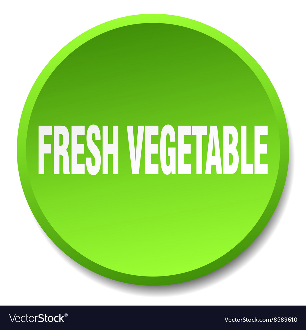 Fresh vegetable green round flat isolated push vector
