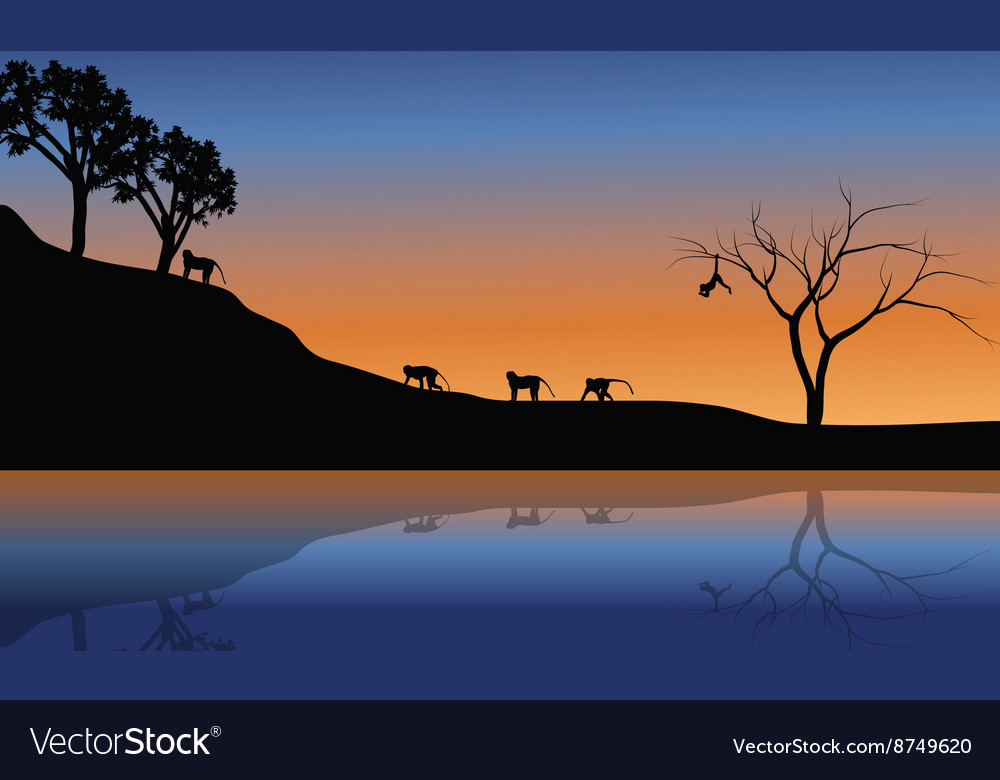 Family monkey in riverbank scenery vector