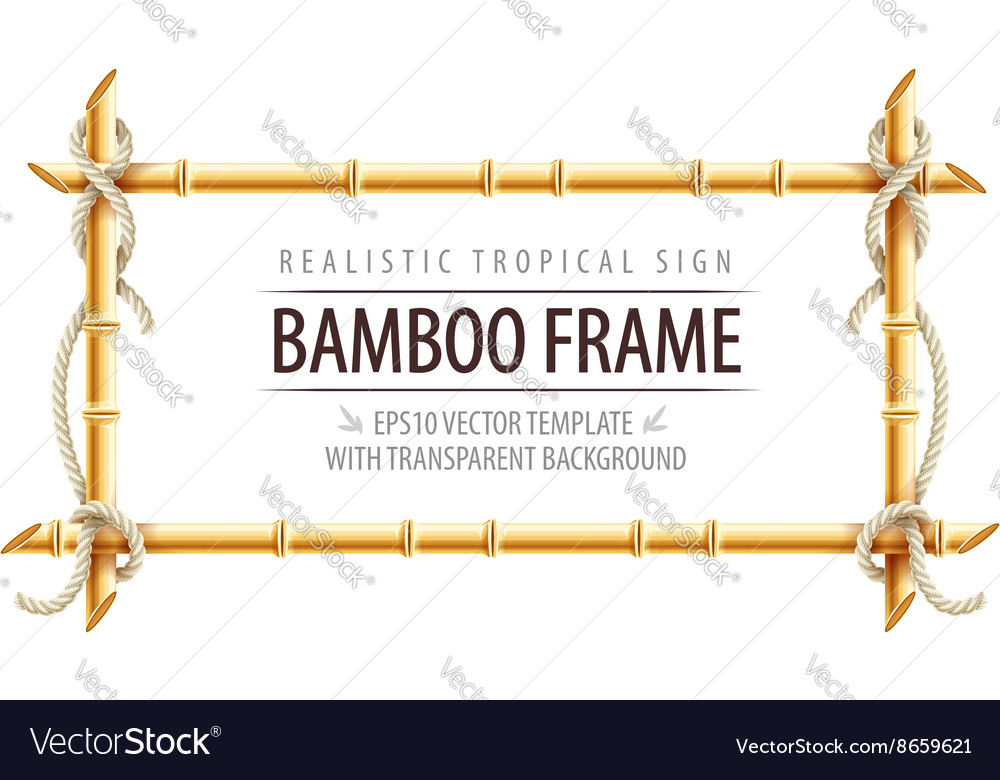 Bamboo frame template for tropical vector