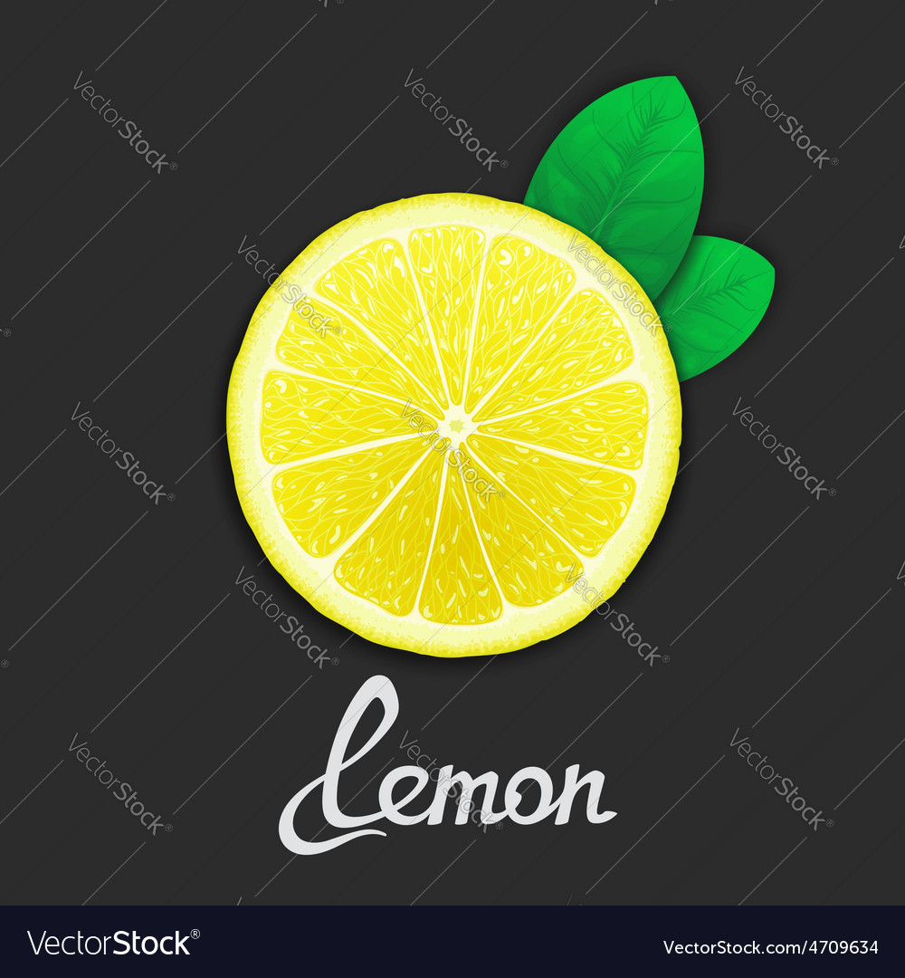 Just of lemon vector