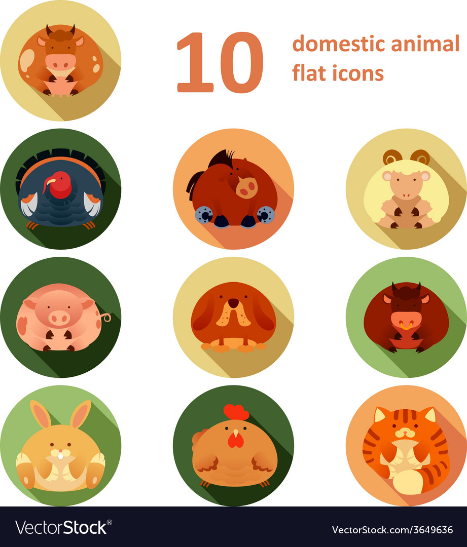 Flat animals vector