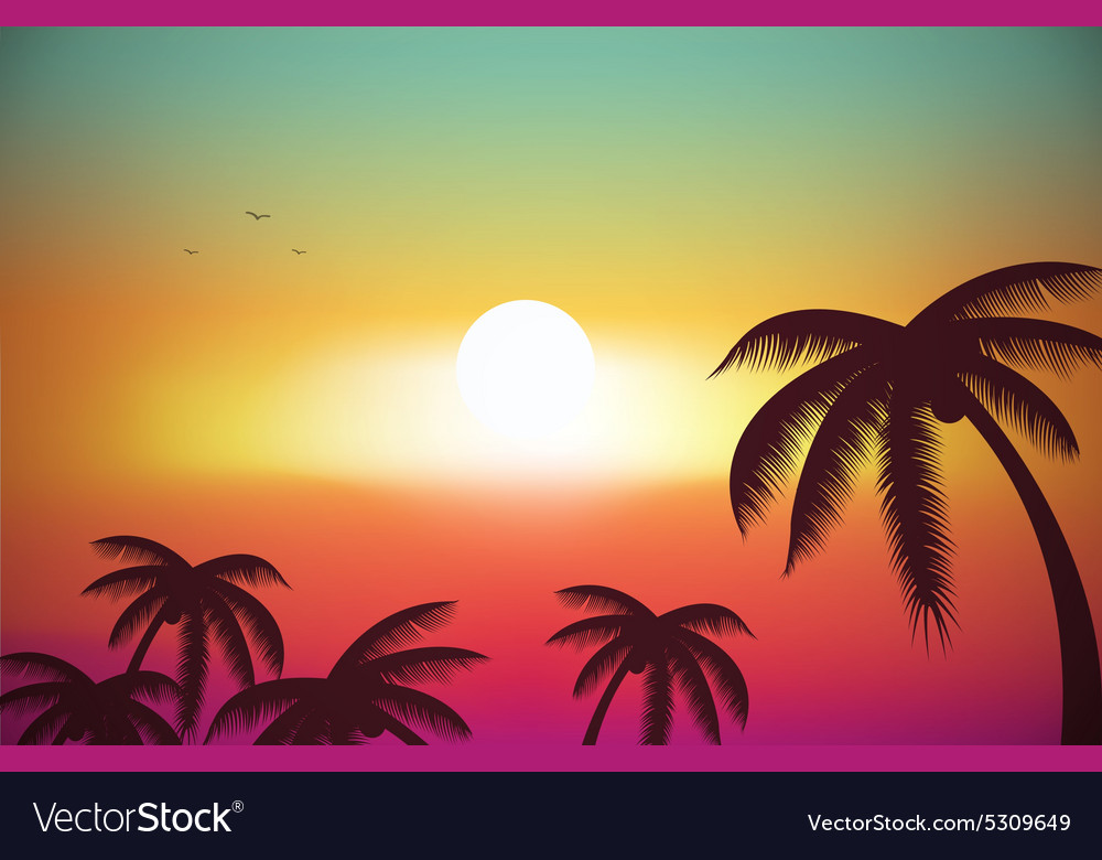 A tropical island sunset sunrise with palm trees vector