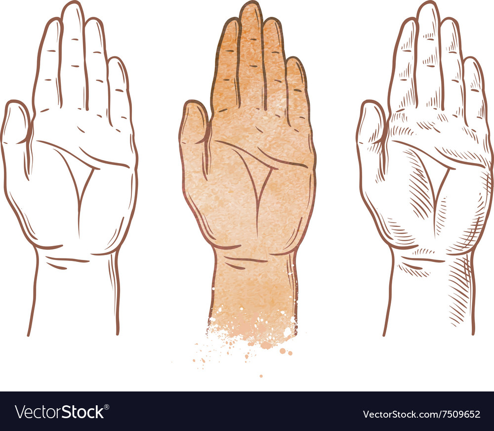 Hand up logo chiromancy palmistry or palm vector