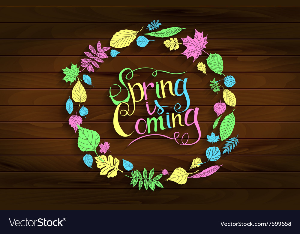 Inscription spring is coming on wooden background vector