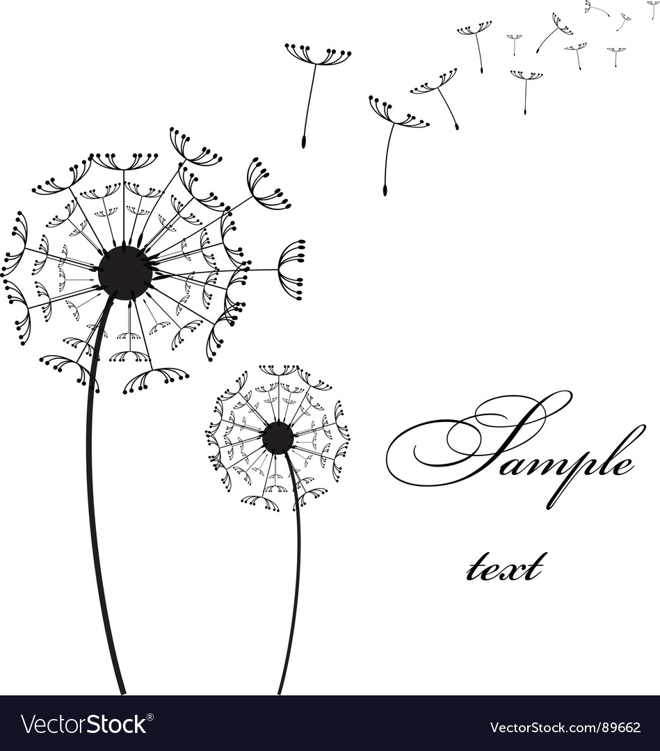 Two dandelion vector