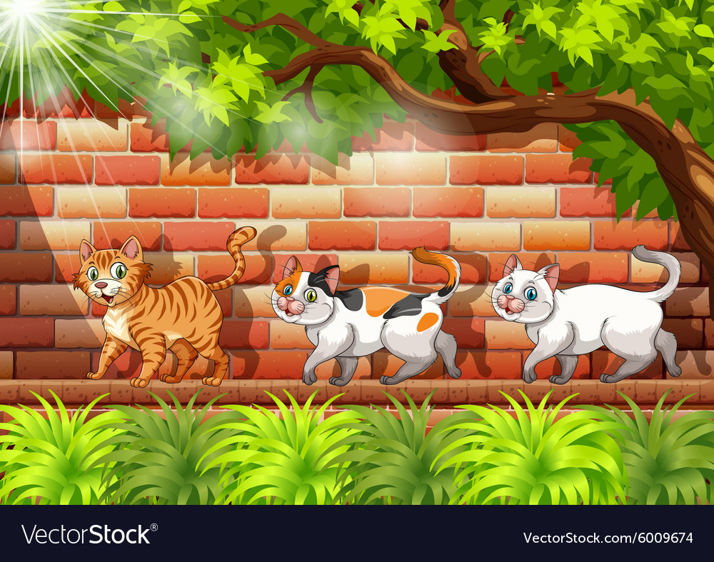 Three cats walking on the wall vector