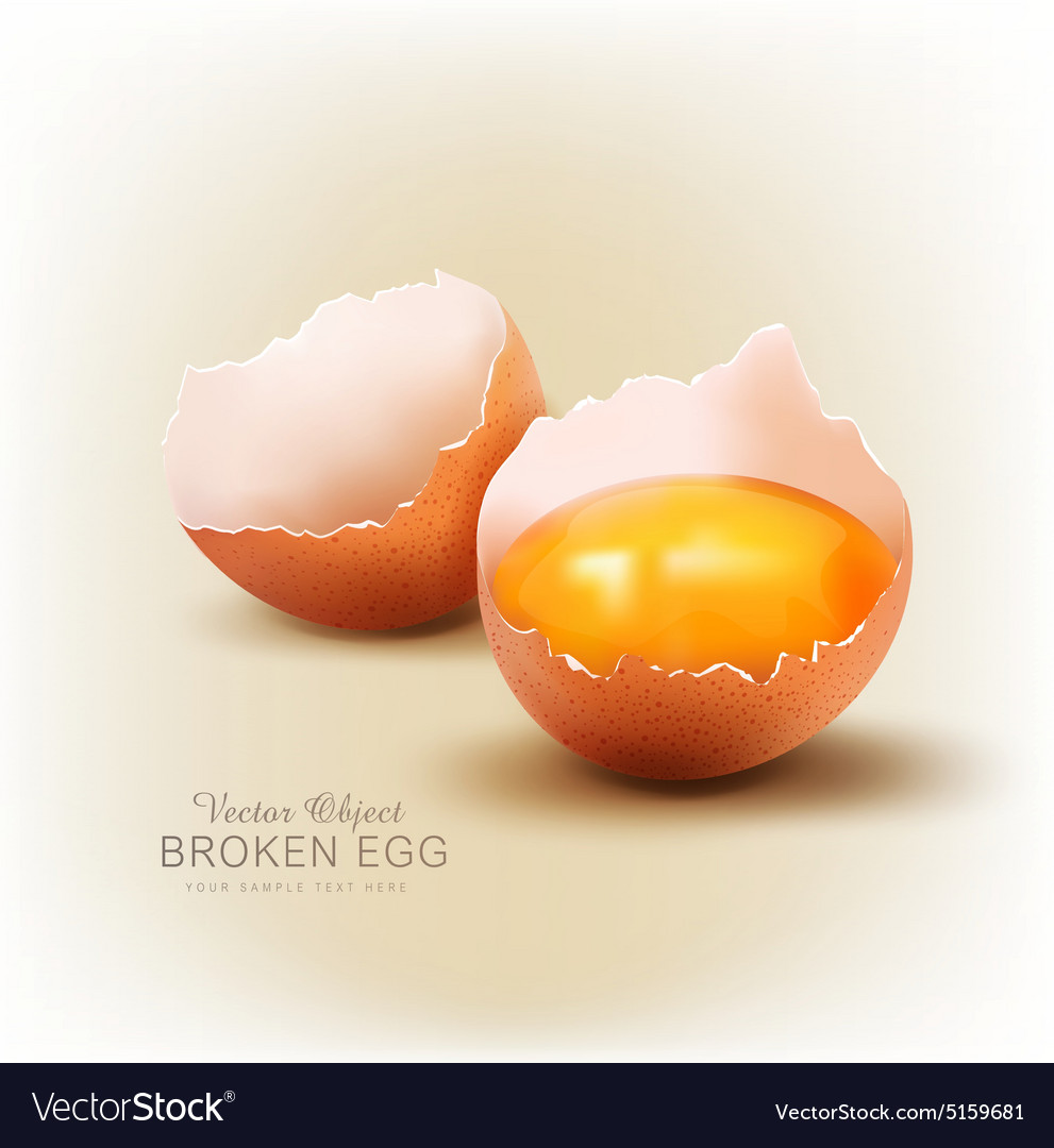 Object  a broken egg with the yolk vector