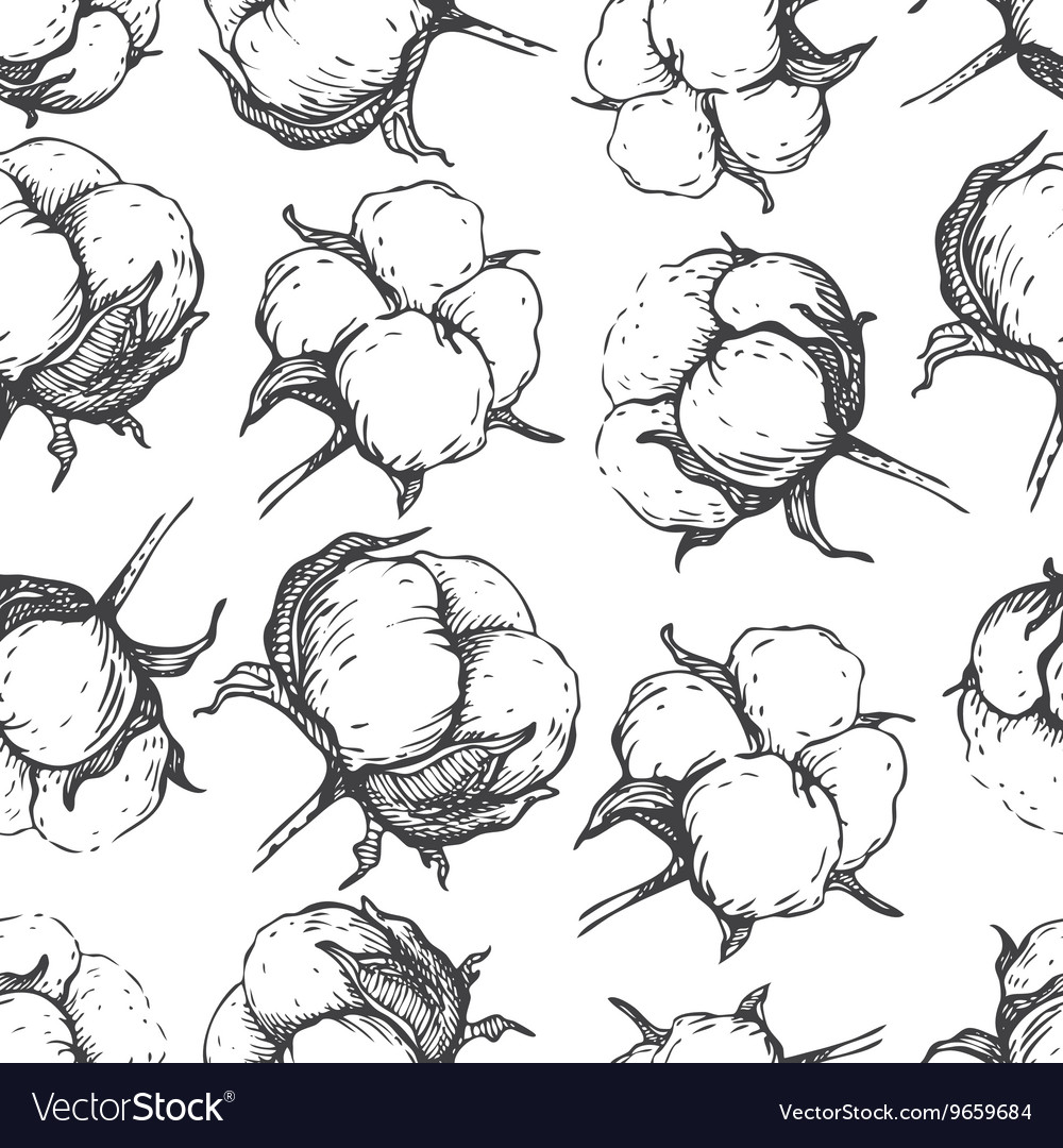 Seamless natural cotton engraving pattern vector