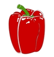 Bell pepper bulgarian vector image