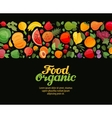 vegetables and fruits  organic vector image