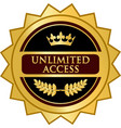 unlimited access gold icon vector image