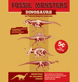 jurassic park invitation or poster with vector image