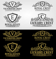 Heraldic Crest Logos and Badges Vol 3 vector image