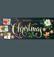 christmas design composition of poinsettia fir vector image