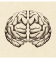 Sketch of human brain vector image