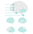 Brain graphic elements vector image
