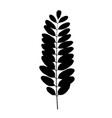 black tree leaf silhouette vector image
