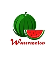 Cartoon striped green watermelon with slice vector image