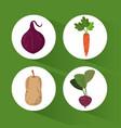 set organic healthy food vector image
