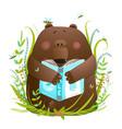 bear cub reading book cute cartoon vector image