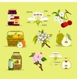 Different fruits and jam jars vector image