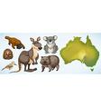 Different wild animals in Australia vector image