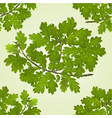 seamless texture branch of oak with acorns vector image