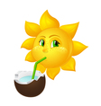 sun with freckles drinks coconut juice vector image vector image