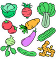 doodle of vegetable set object vector image