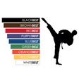 karate background vector image