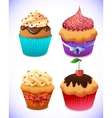 cupcake pack Chocolate and vanilla icing cupcakes vector image