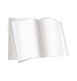 Magazines pages vector image